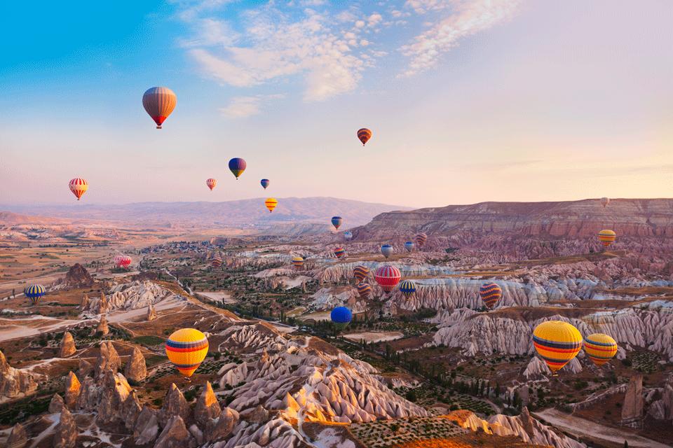ENDLESS TURKEY